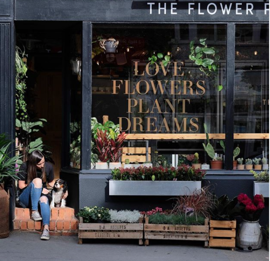 The Flower Plant First Shop