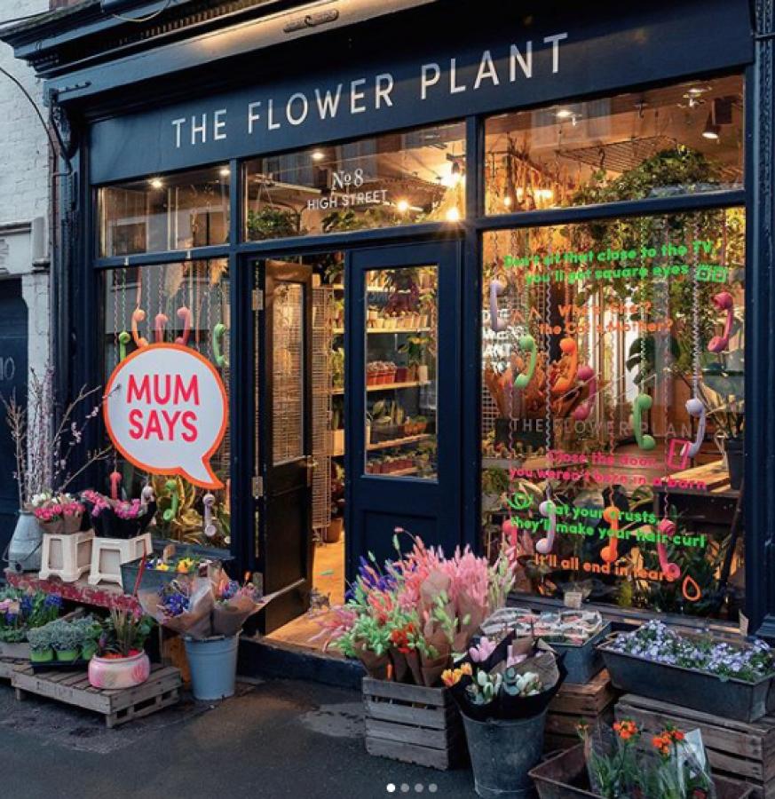 The Flower Plant New Shop