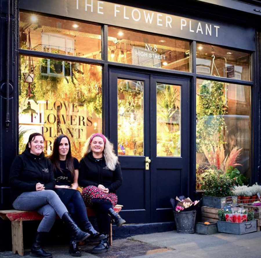 The Flower Plant New Shop