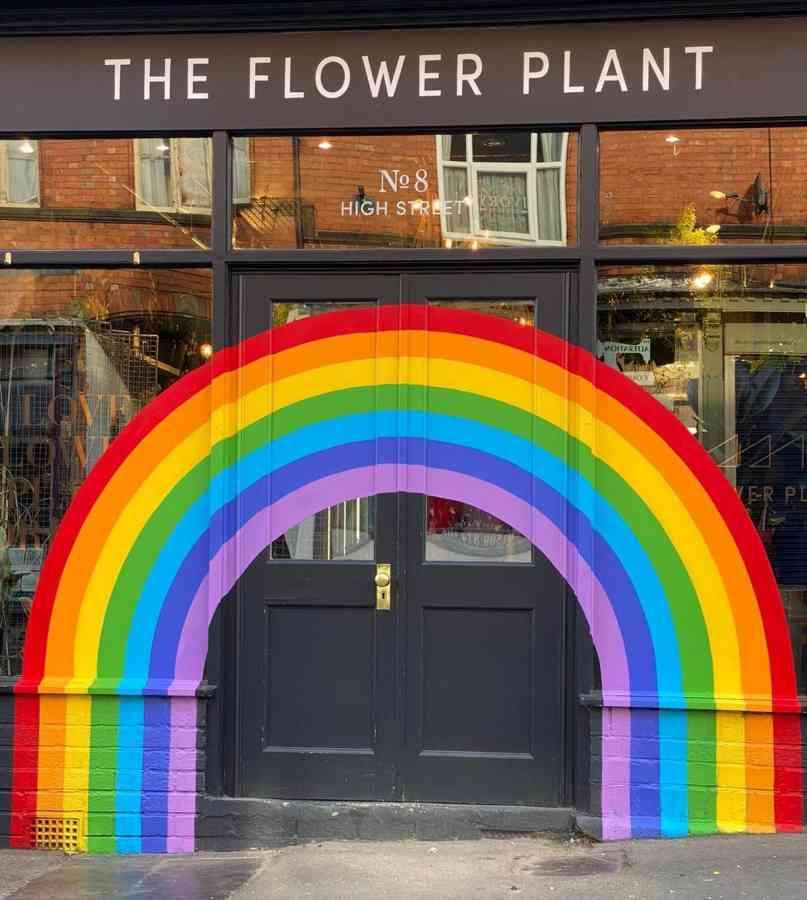 The Rainbow Plant Rainbow