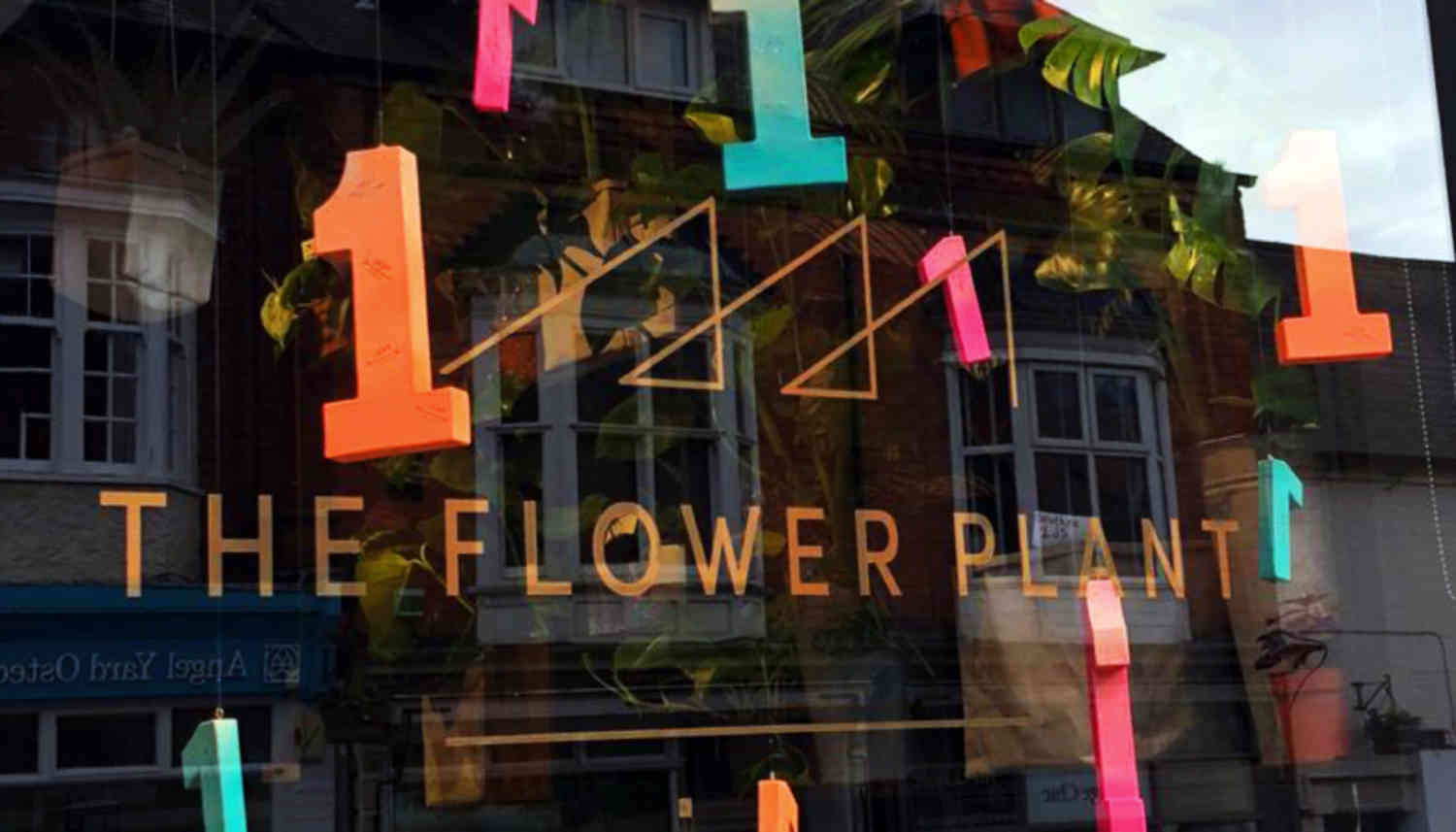The Flower Plant 1st Birthday Image