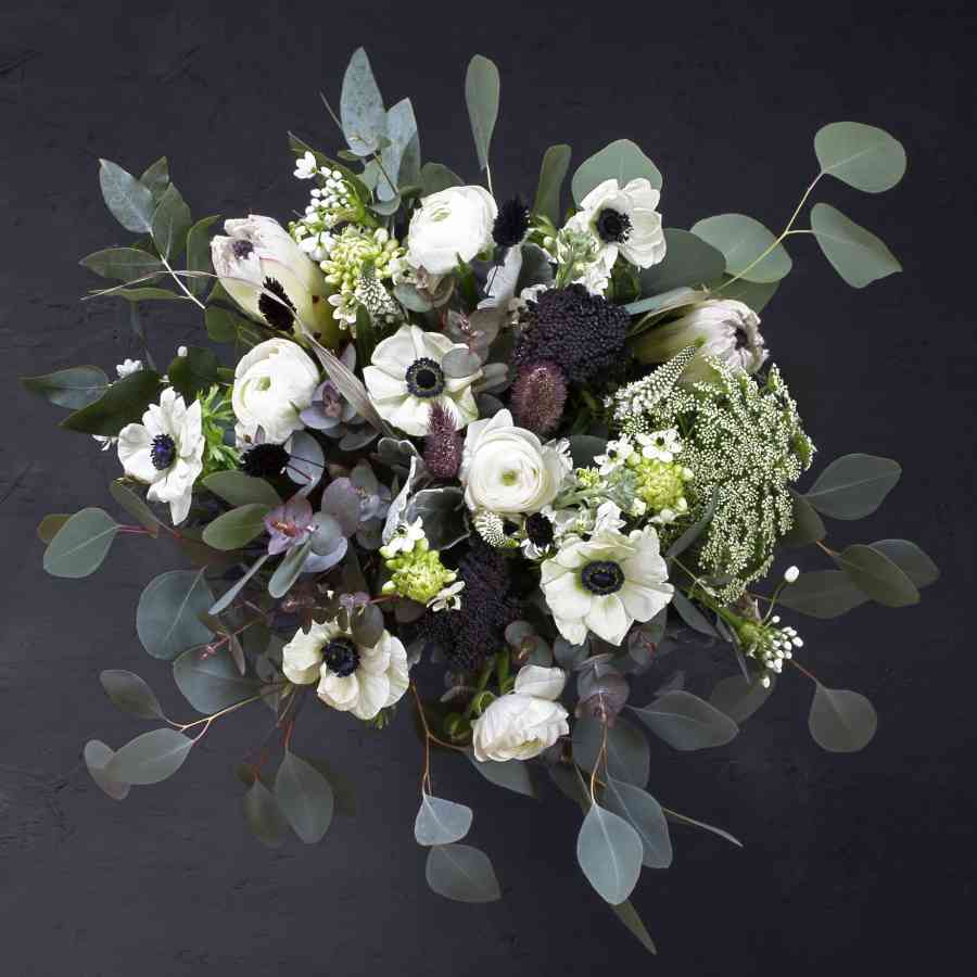 Black and white bouquet with white anemones, ranunculus, ornithogalum, ammi visnaga, white allium, veronica, protea, pennisetum, dried black achillea, mixed eucalyptus